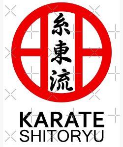 شیتوریو کاراته
