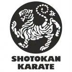 بهترین سبک کاراته کنترلی