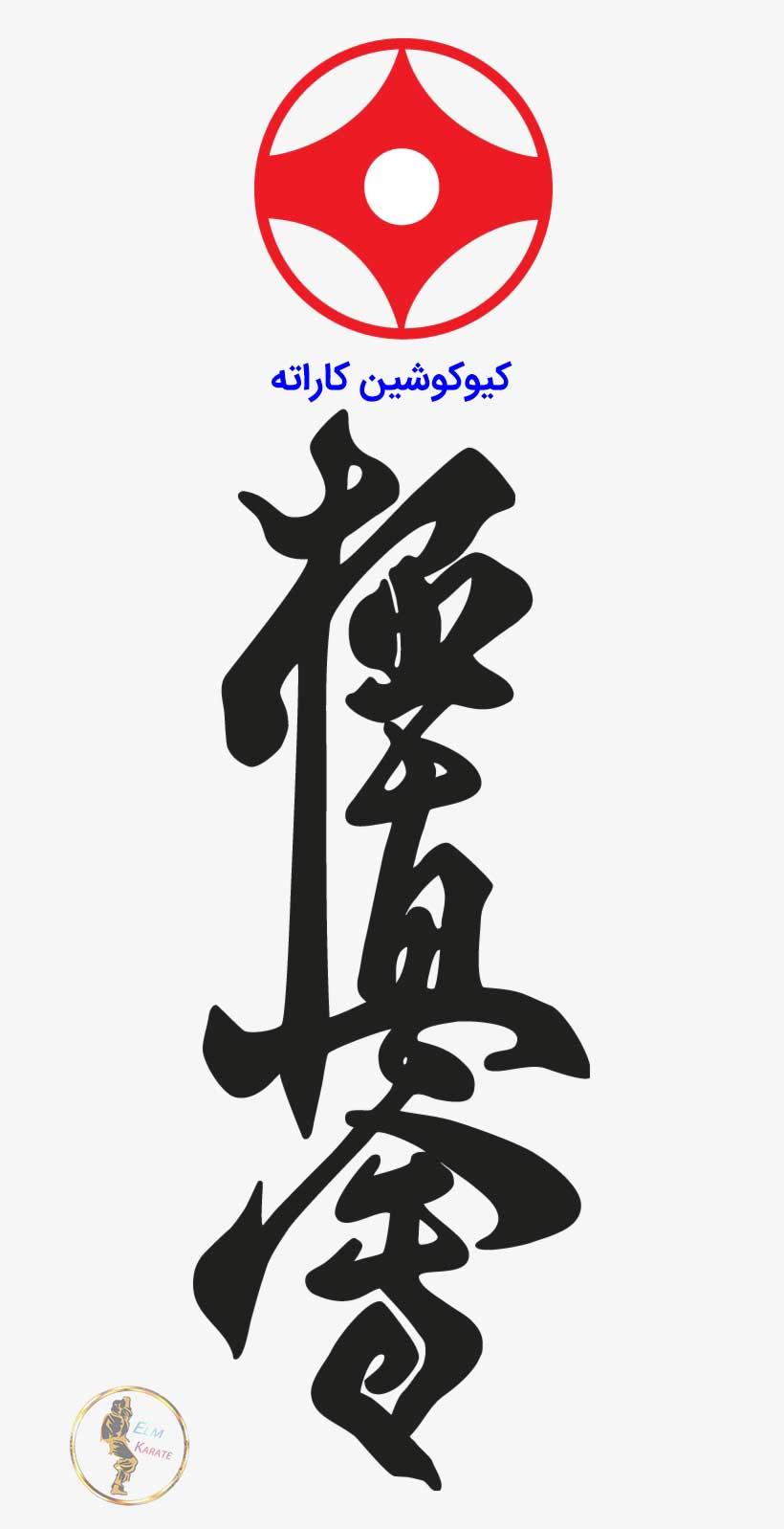 عکس کیوکوشین کاراته